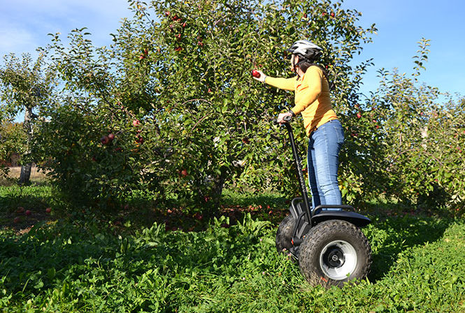 Woman picking apple while on Segway x2